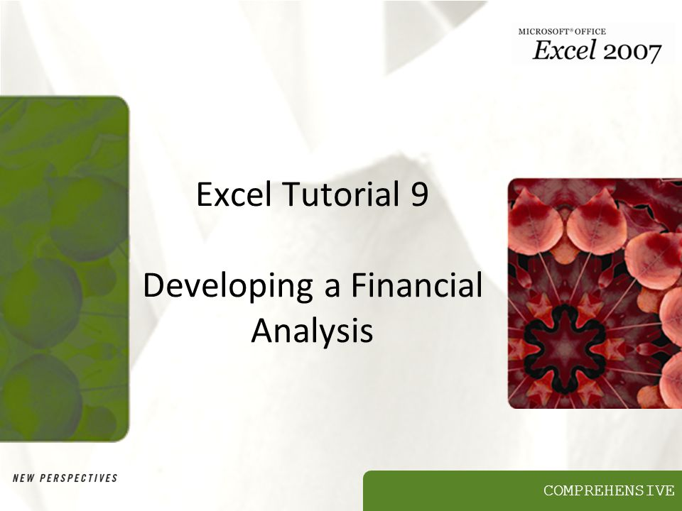 COMPREHENSIVE Excel Tutorial 9 Developing a Financial Analysis