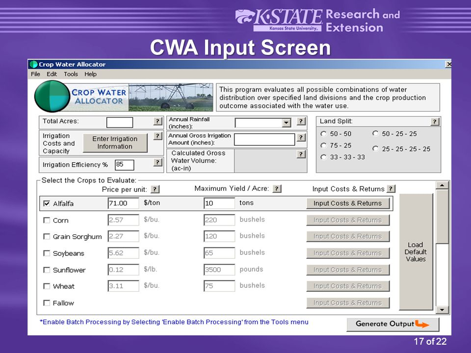 17 of 22 CWA Input Screen