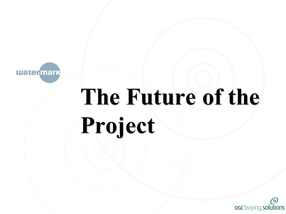 The Future of the Project