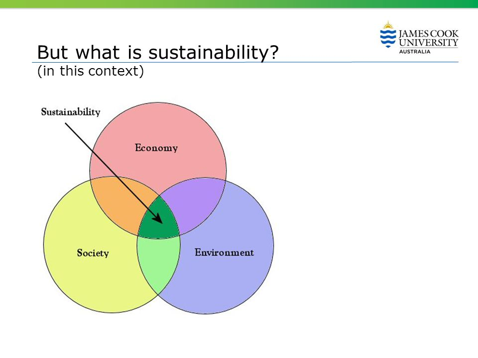 But what is sustainability? (in this context)