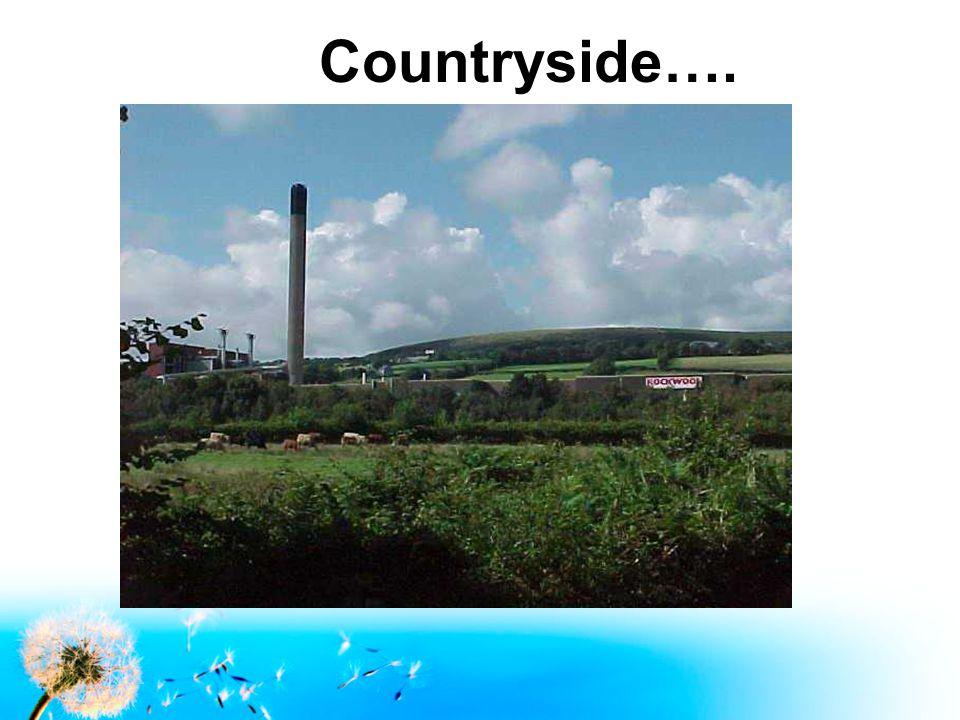 Countryside….