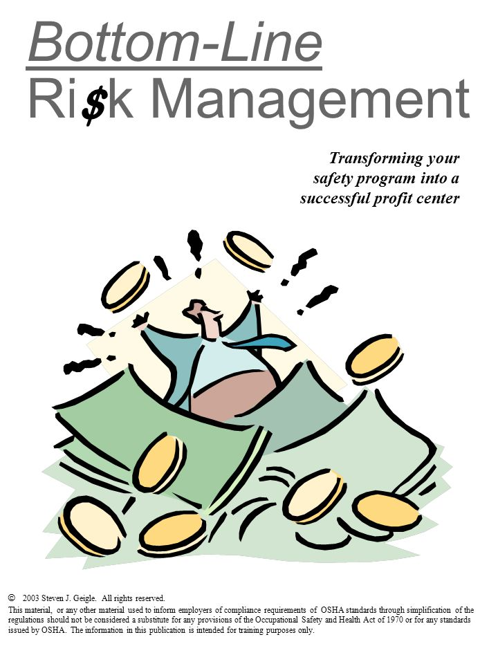 Bottom-Line Risk Management Transforming your safety program into a successful profit center $ © 2003 Steven J.
