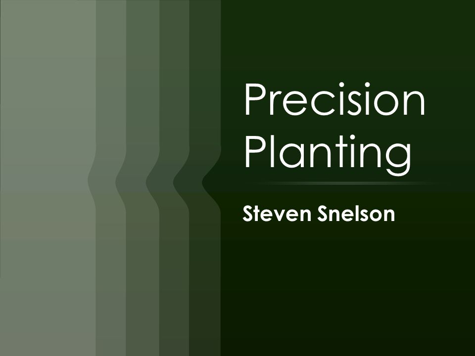 Precision Planting Steven Snelson