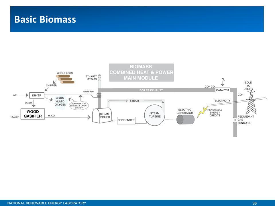 39 Basic Biomass