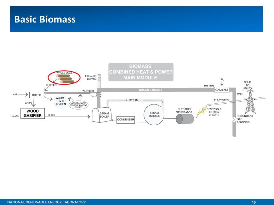 40 Basic Biomass