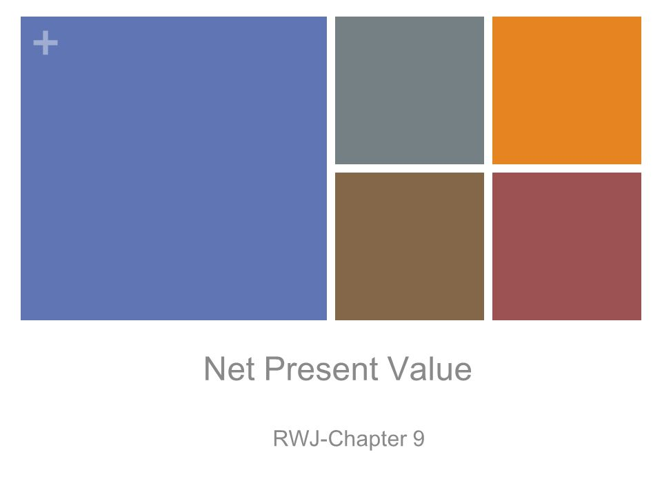 + Net Present Value RWJ-Chapter 9