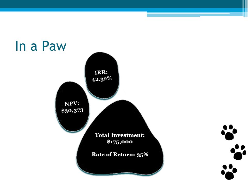 In a Paw IRR: 42.32% NPV: $30,373 Total Investment: $175,000 Rate of Return: 35%