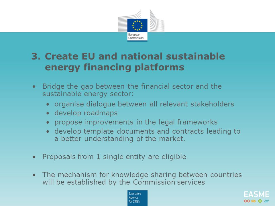 Bridge the gap between the financial sector and the sustainable energy sector: organise dialogue between all relevant stakeholders develop roadmaps pr