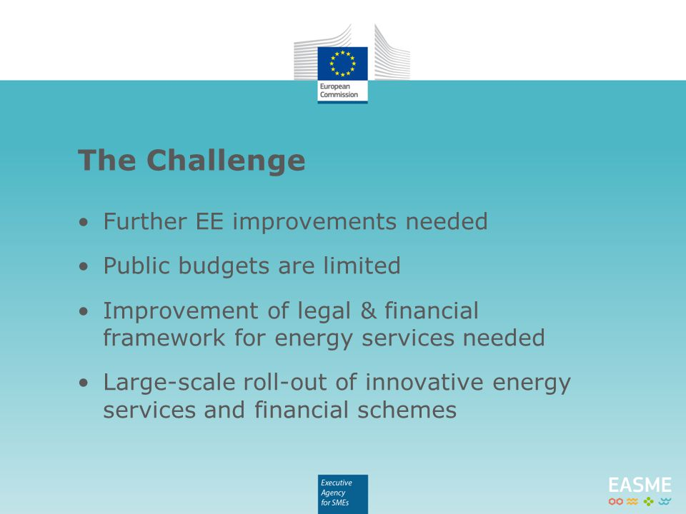 Further EE improvements needed Public budgets are limited Improvement of legal & financial framework for energy services needed Large-scale roll-out o