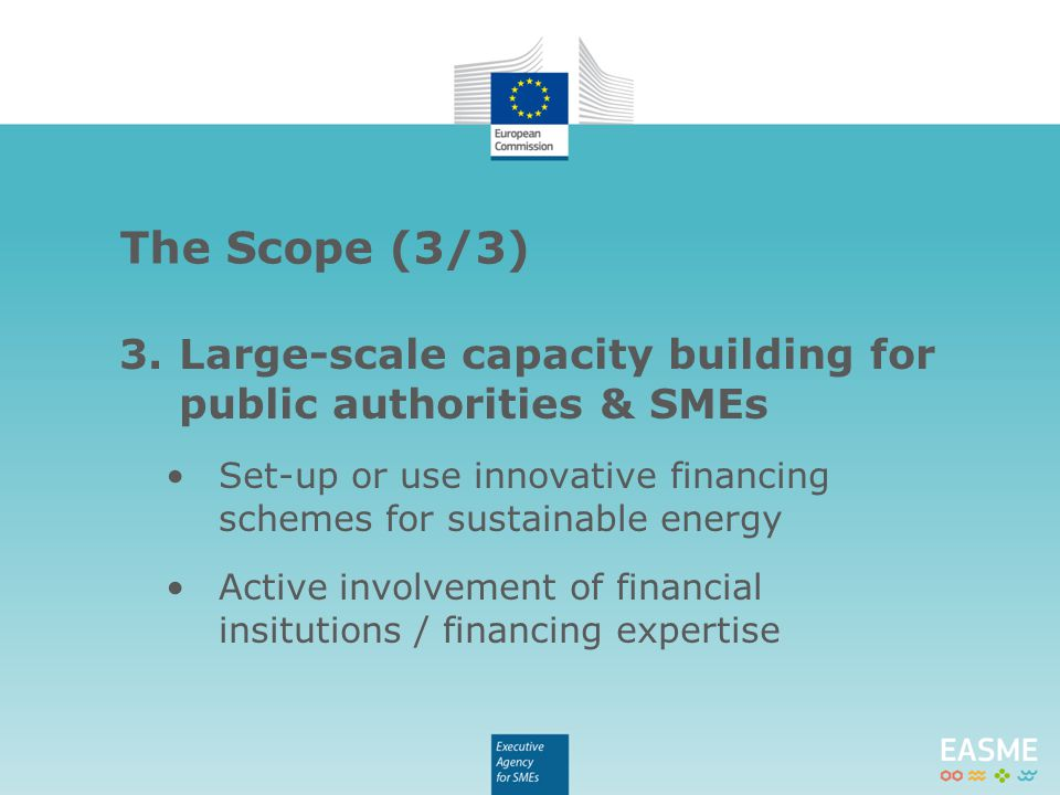 3.Large-scale capacity building for public authorities & SMEs Set-up or use innovative financing schemes for sustainable energy Active involvement of