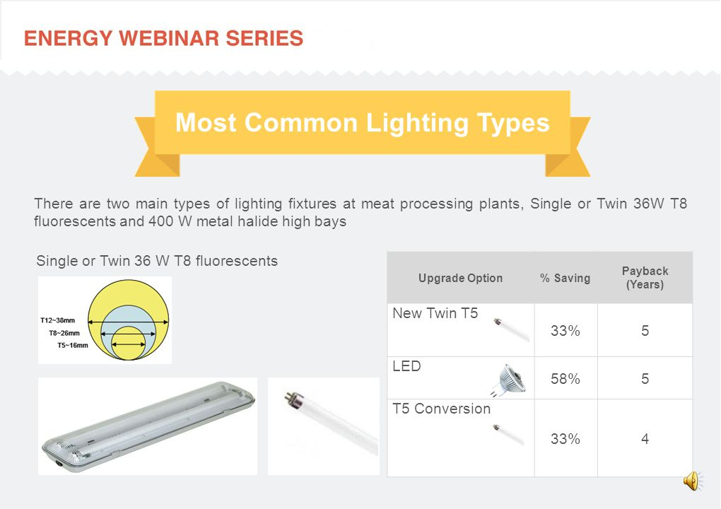 Most Common Lighting Types There are two main types of lighting fixtures at meat processing plants, Single or Twin 36W T8 fluorescents and 400 W metal halide high bays Single or Twin 36 W T8 fluorescents Upgrade Option% Saving Payback (Years) New Twin T5 33%5 LED 58%5 T5 Conversion 33%4
