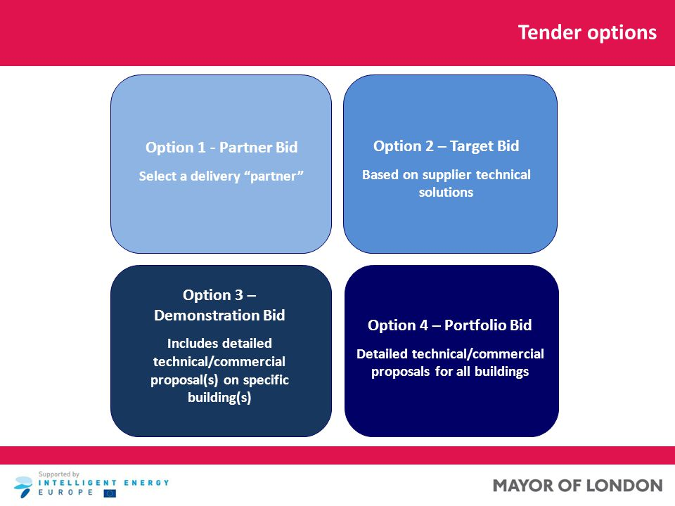 Tender options Option 1 - Partner Bid Select a delivery partner First building retrofitted Option 3 – Demonstration Bid Includes detailed technical/commercial proposal(s) on specific building(s) Option 4 – Portfolio Bid Detailed technical/commercial proposals for all buildings Option 2 – Target Bid Based on supplier technical solutions