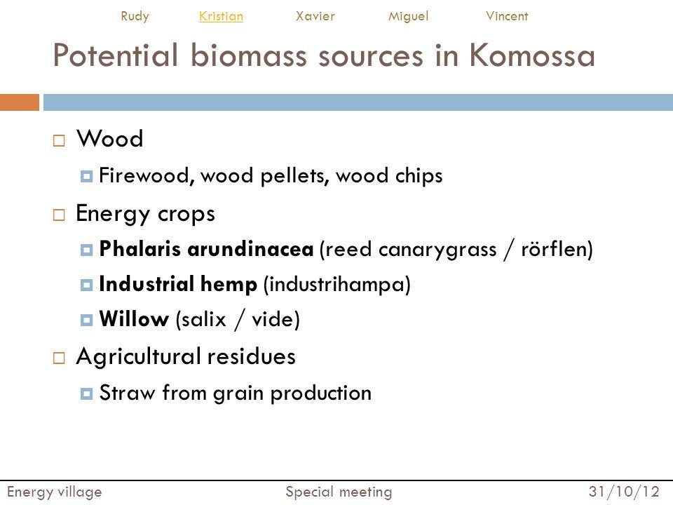 Potential biomass sources in Komossa  Wood  Firewood, wood pellets, wood chips  Energy crops  Phalaris arundinacea (reed canarygrass / rörflen) 