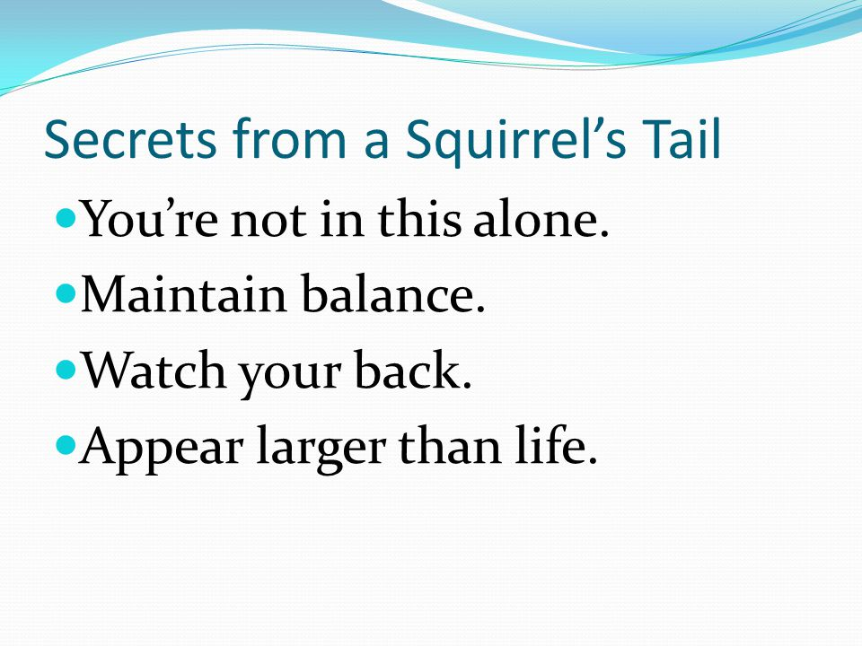 Secrets from a Squirrel's Tail You're not in this alone.