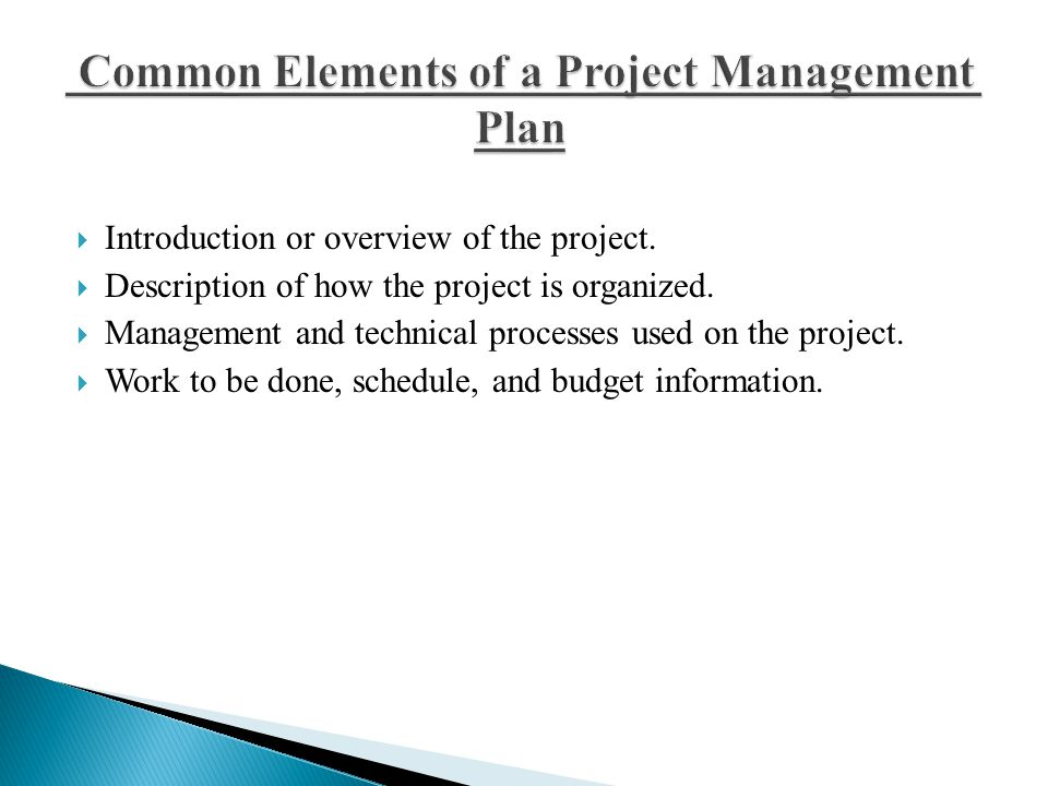  Introduction or overview of the project.  Description of how the project is organized.  Management and technical processes used on the project. 