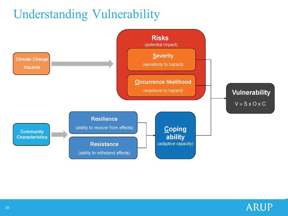 20 Understanding Vulnerability