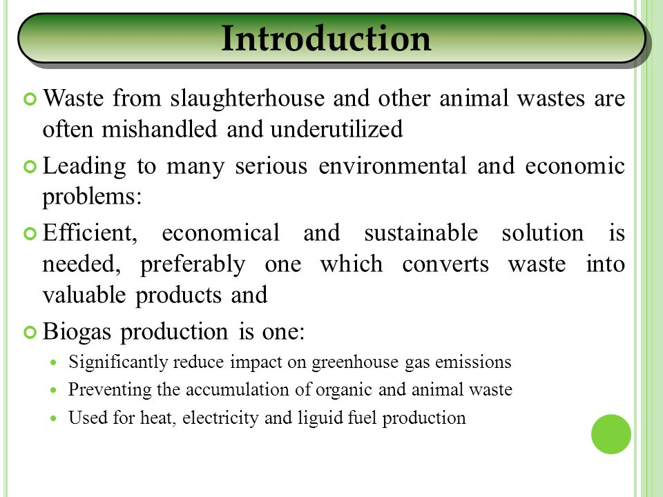 Waste from slaughterhouse and other animal wastes are often mishandled and underutilized Leading to many serious environmental and economic problems: Efficient, economical and sustainable solution is needed, preferably one which converts waste into valuable products and Biogas production is one: Significantly reduce impact on greenhouse gas emissions Preventing the accumulation of organic and animal waste Used for heat, electricity and liguid fuel production Introduction