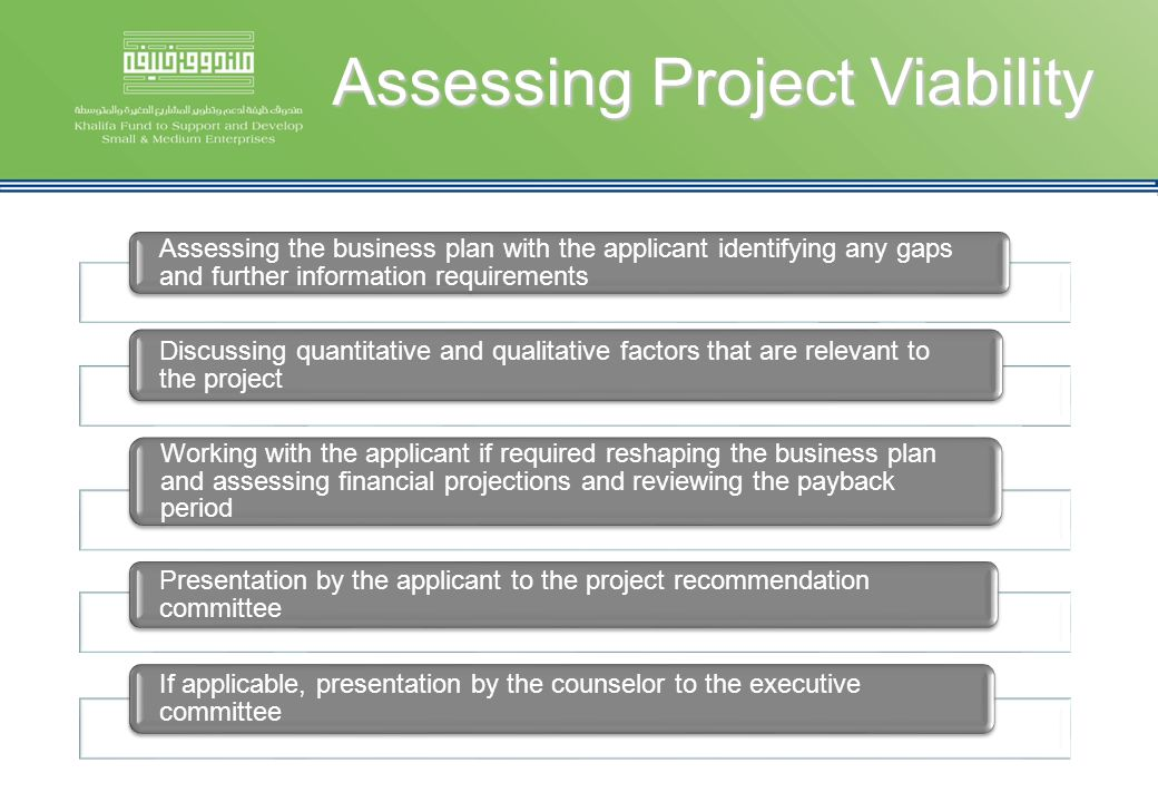 Assessing Project Viability Assessing the business plan with the applicant identifying any gaps and further information requirements Discussing quanti