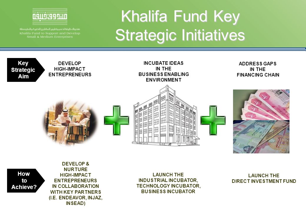 Khalifa Fund Key Strategic Initiatives DEVELOP HIGH-IMPACT ENTREPRENEURS INCUBATE IDEAS IN THE BUSINESS ENABLING ENVIRONMENT Key Strategic Aim How to