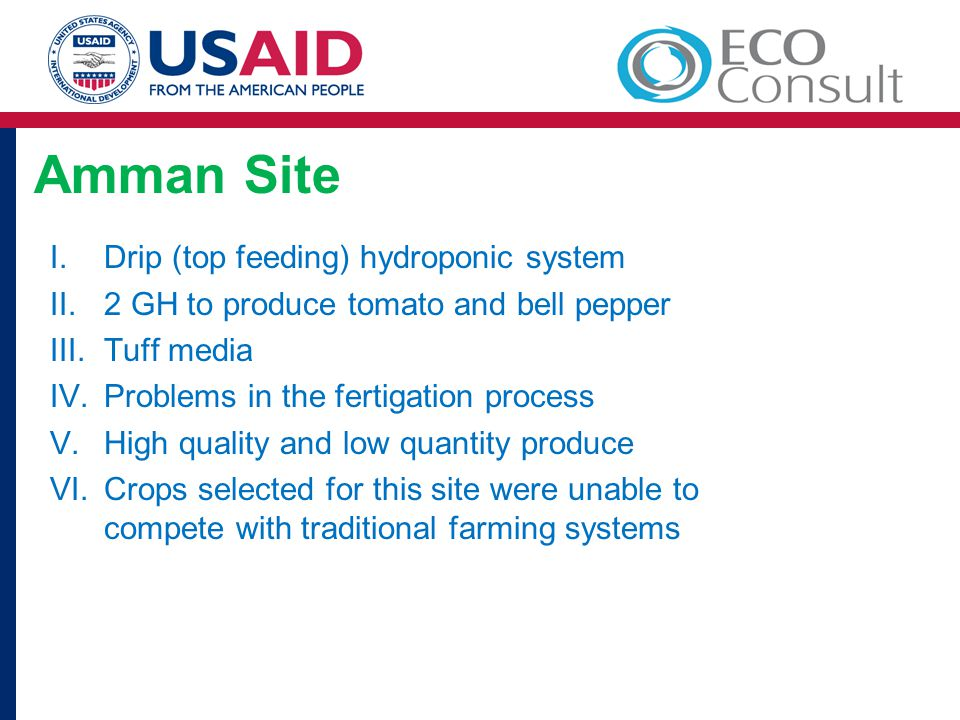 Amman Site I.Drip (top feeding) hydroponic system II.2 GH to produce tomato and bell pepper III.Tuff media IV.Problems in the fertigation process V.High quality and low quantity produce VI.Crops selected for this site were unable to compete with traditional farming systems