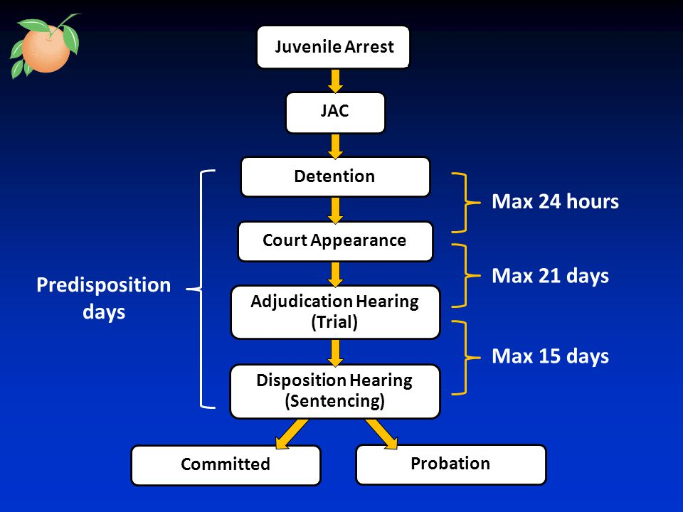 CommittedProbation Disposition Hearing (Sentencing) Max 21 days Max 15 days Predisposition days Max 24 hours Adjudication Hearing (Trial) Court AppearanceDetention JAC Juvenile Arrest
