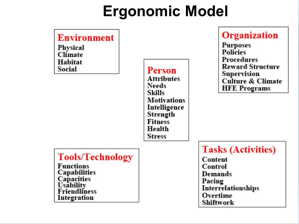 Ergonomic Model