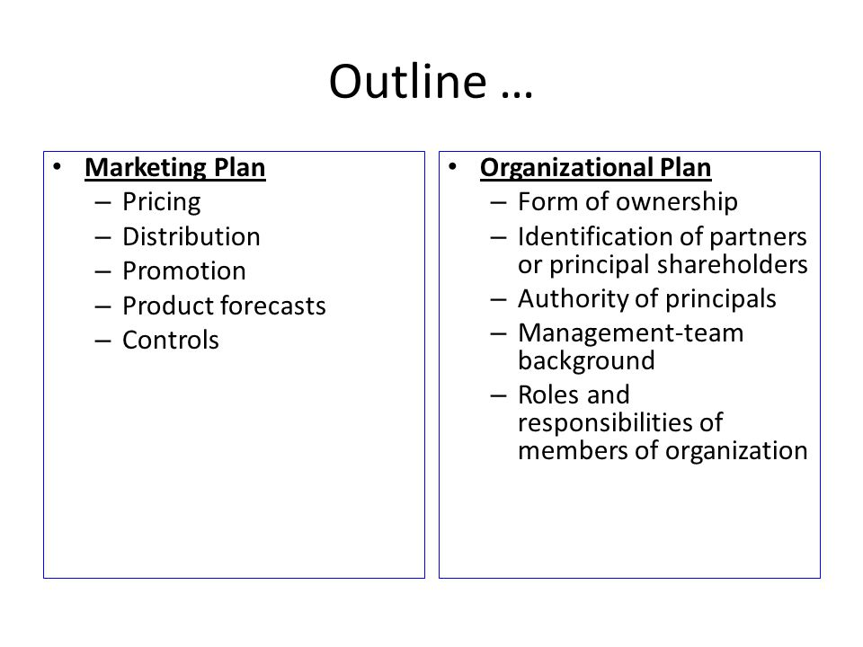 Outline … Marketing Plan – Pricing – Distribution – Promotion – Product forecasts – Controls Organizational Plan – Form of ownership – Identification of partners or principal shareholders – Authority of principals – Management-team background – Roles and responsibilities of members of organization