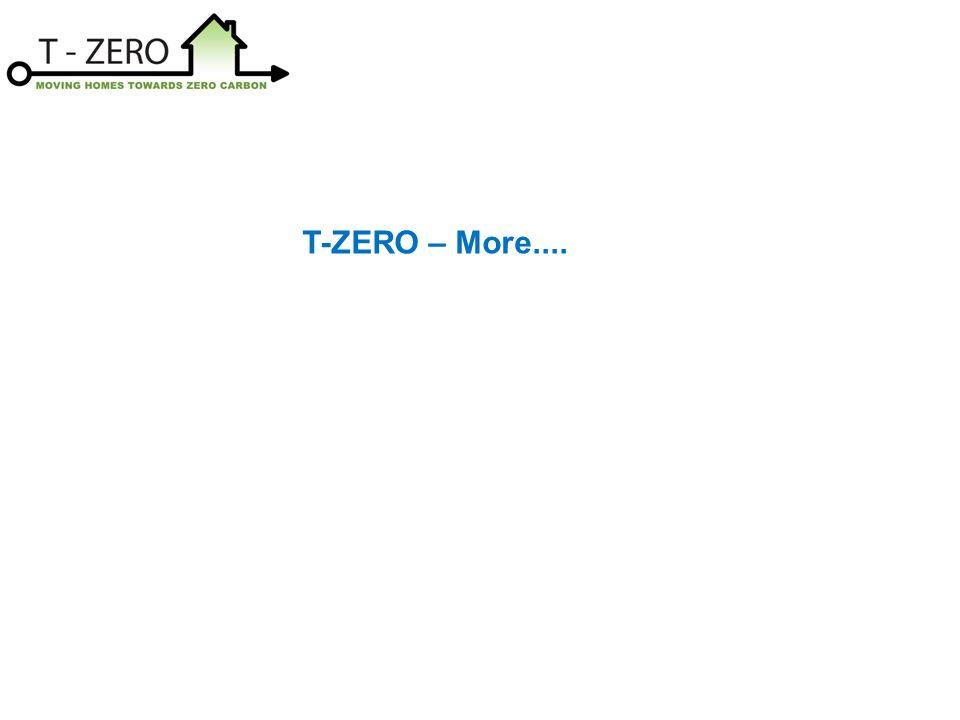 T-ZERO – More....