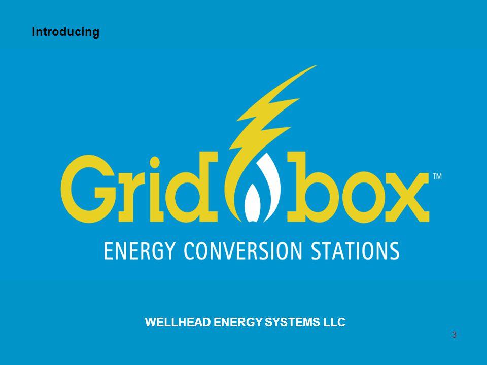 WELLHEAD ENERGY SYSTEMS LLC Introducing 3