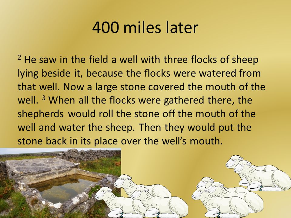 400 miles later 2 He saw in the field a well with three flocks of sheep lying beside it, because the flocks were watered from that well.