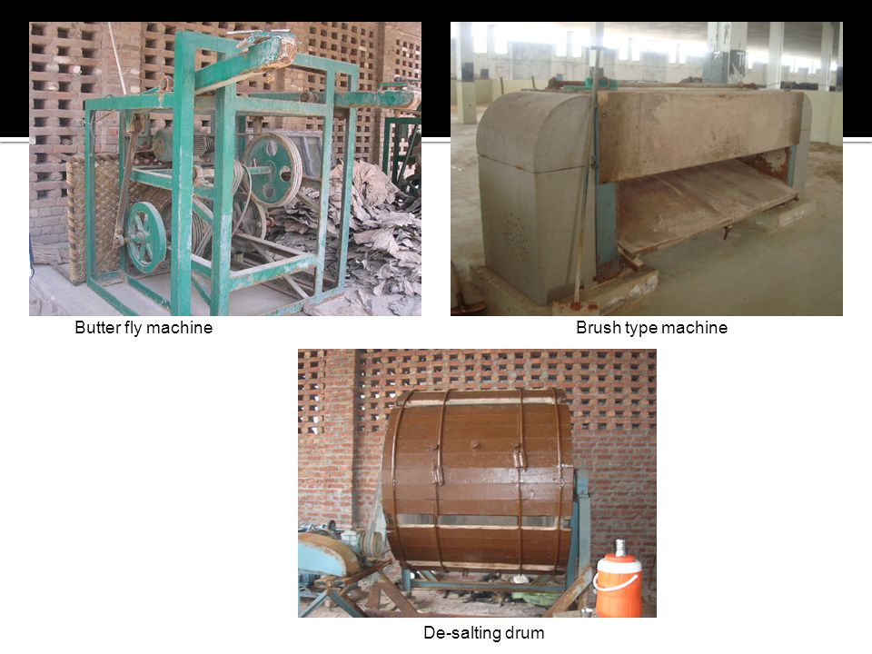 Butter fly machine Brush type machine De-salting drum