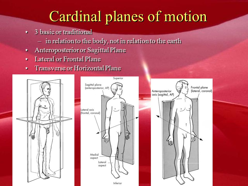Cardinal planes of motion 3 basic or traditional –in relation to the body, not in relation to the earth Anteroposterior or Sagittal Plane Lateral or F