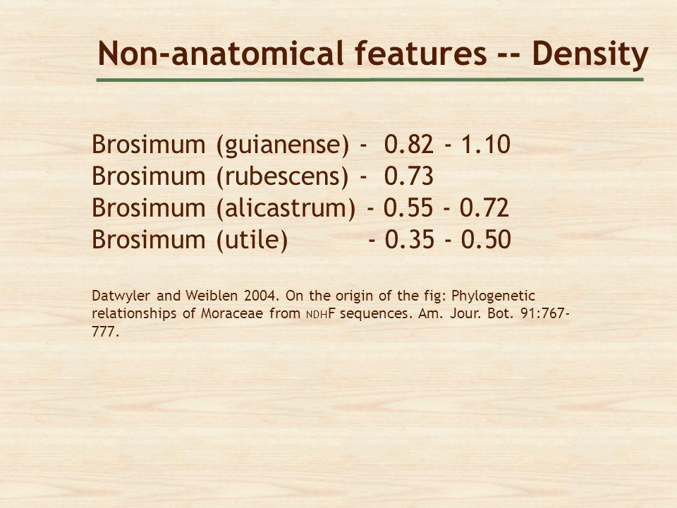 Non-anatomical features -- Density Brosimum (guianense) - 0.82 - 1.10 Brosimum (rubescens) - 0.73 Brosimum (alicastrum) - 0.55 - 0.72 Brosimum (utile)