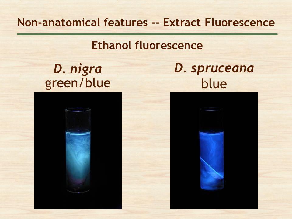 Ethanol fluorescence D. spruceana blue Non-anatomical features -- Extract Fluorescence D. nigra green/blue