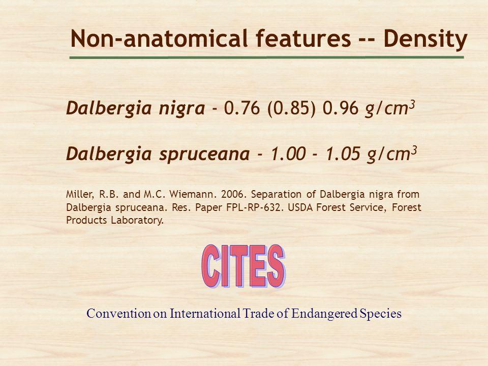 Non-anatomical features -- Density Dalbergia nigra - 0.76 (0.85) 0.96 g/cm 3 Dalbergia spruceana - 1.00 - 1.05 g/cm 3 Miller, R.B. and M.C. Wiemann. 2