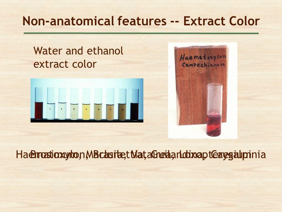 Non-anatomical features -- Extract Color Water and ethanol extract color Haematoxylon, Brasilettia, Guilandina, CaesalpiniaBrosimum, Maclura, Vatairea