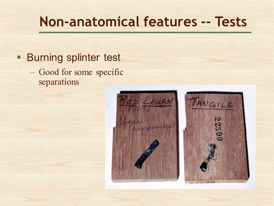 Non-anatomical features -- Tests  Burning splinter test Burning splinter test –Good for some specific separationsGood for some specific separations
