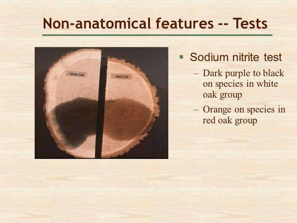 Non-anatomical features -- Tests  Sodium nitrite test Sodium nitrite test –Dark purple to black on species in white oak groupDark purple to black on