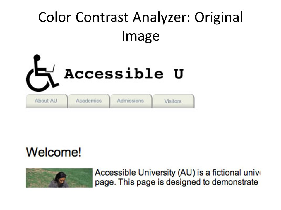 Color Contrast Analyzer: Original Image
