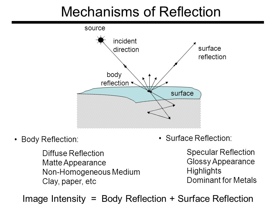 Mechanisms of Reflection source surface reflection surface incident direction body reflection Body Reflection: Diffuse Reflection Matte Appearance Non-Homogeneous Medium Clay, paper, etc Surface Reflection: Specular Reflection Glossy Appearance Highlights Dominant for Metals Image Intensity = Body Reflection + Surface Reflection