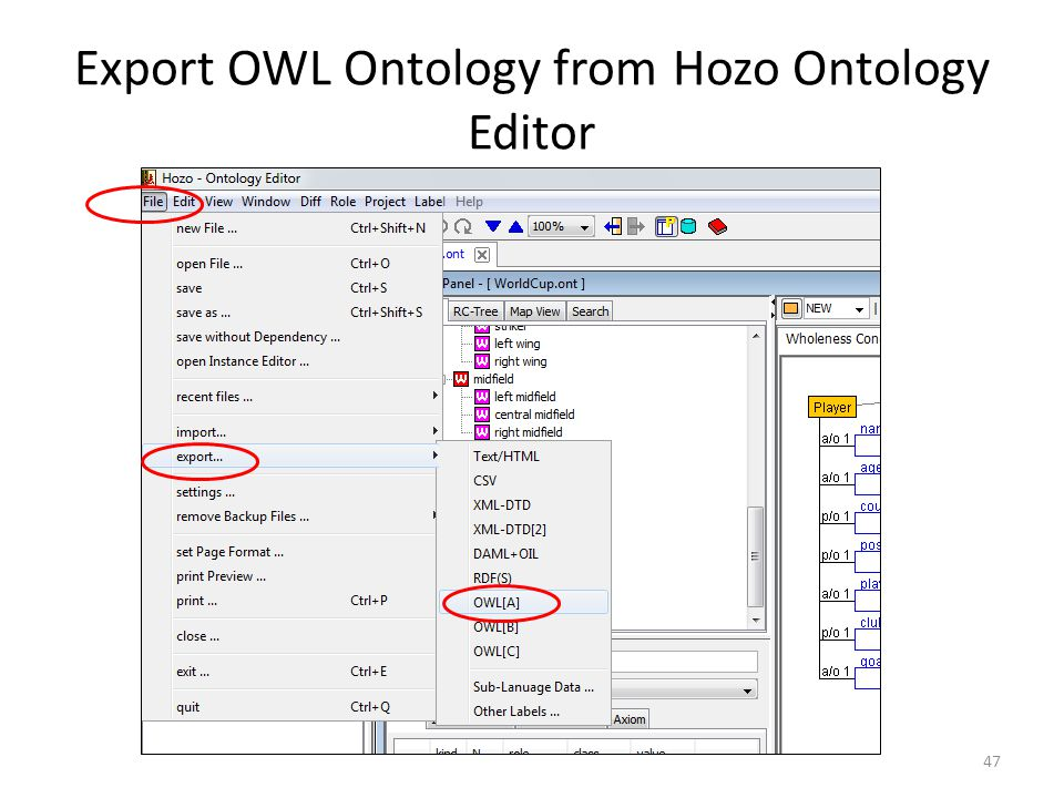Export OWL Ontology from Hozo Ontology Editor 47