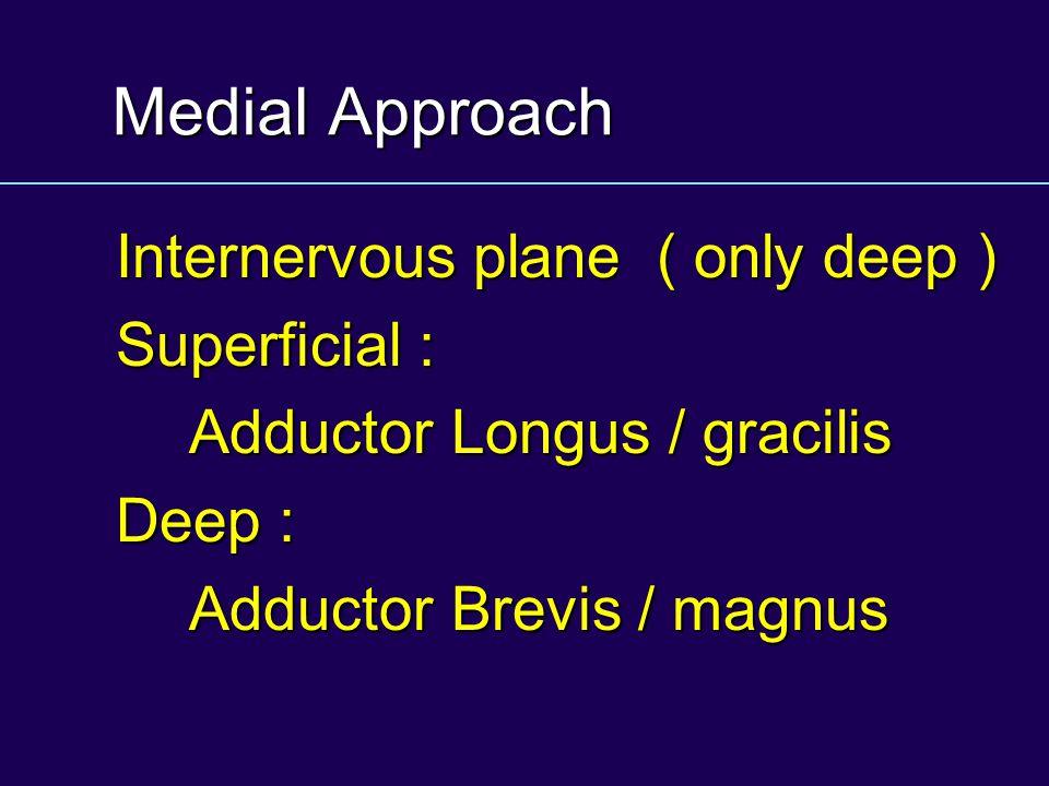 Medial Approach Internervous plane ( only deep ) Superficial : Adductor Longus / gracilis Deep : Adductor Brevis / magnus