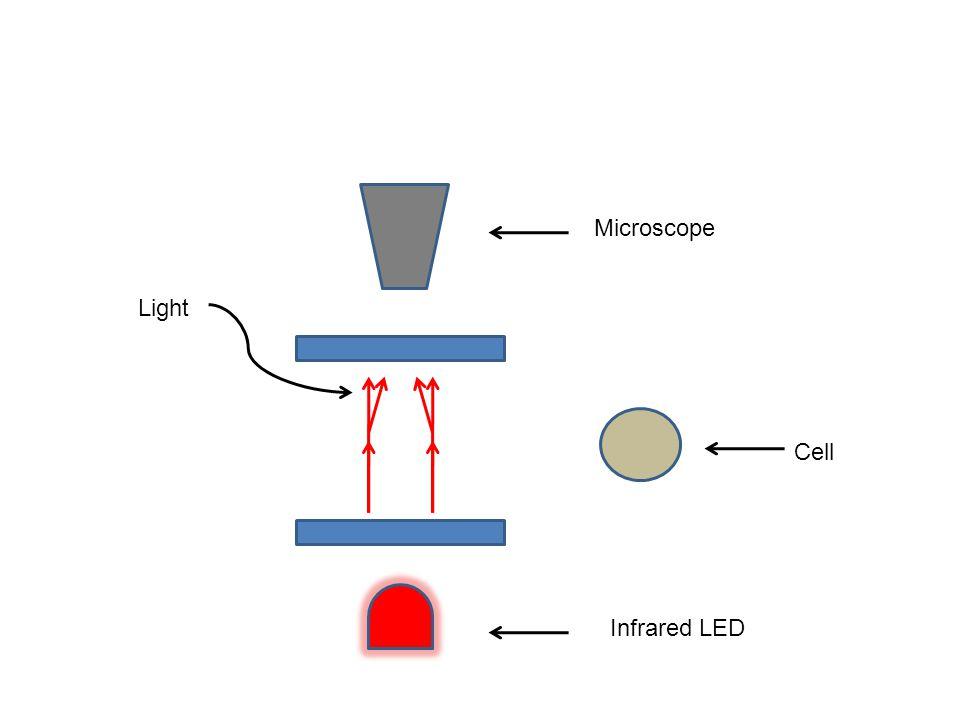 Flow Cytometry vs.