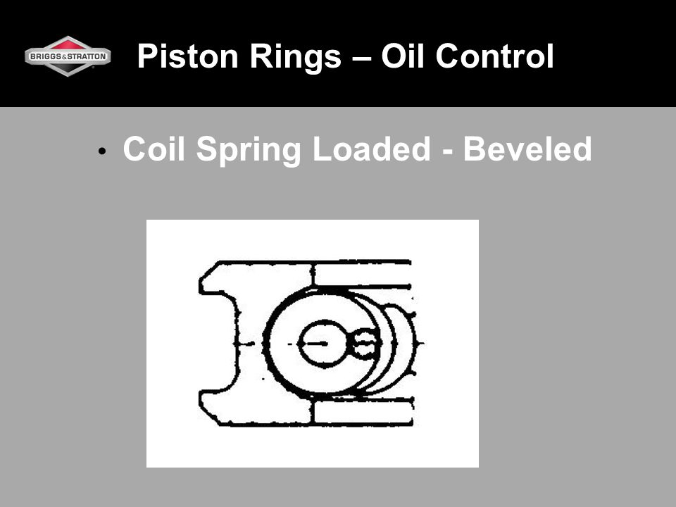 Piston Rings – Oil Control Coil Spring Loaded - Beveled