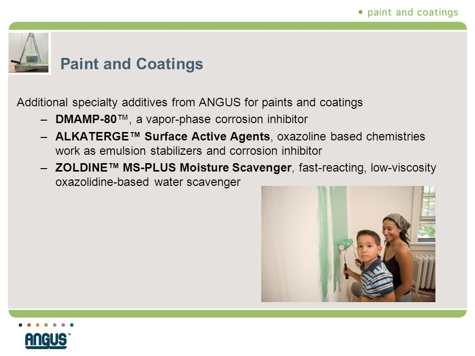 Paint and Coatings Additional specialty additives from ANGUS for paints and coatings –DMAMP-80™, a vapor-phase corrosion inhibitor –ALKATERGE™ Surface