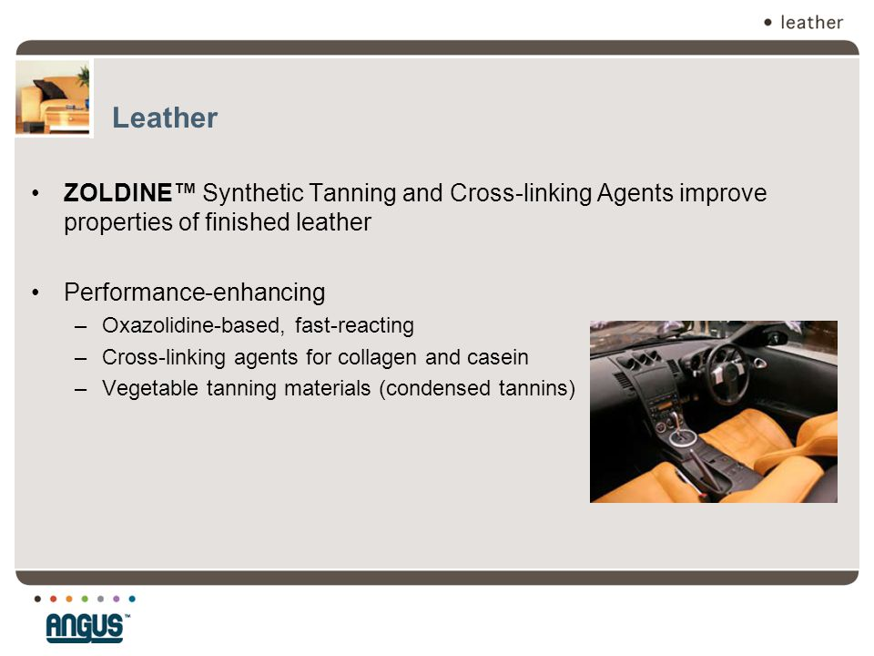 Leather ZOLDINE™ Synthetic Tanning and Cross-linking Agents improve properties of finished leather Performance-enhancing –Oxazolidine-based, fast-reac