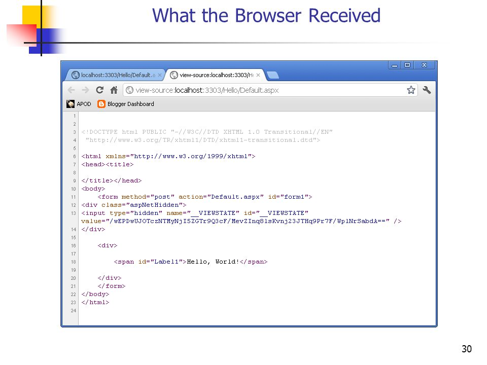 30 What the Browser Received