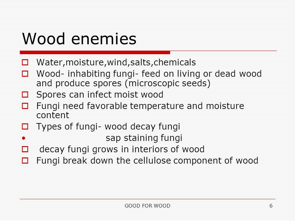 GOOD FOR WOOD6 Wood enemies  Water,moisture,wind,salts,chemicals  Wood- inhabiting fungi- feed on living or dead wood and produce spores (microscopic seeds)  Spores can infect moist wood  Fungi need favorable temperature and moisture content  Types of fungi- wood decay fungi sap staining fungi  decay fungi grows in interiors of wood  Fungi break down the cellulose component of wood