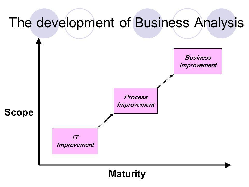 IT Improvement Process Improvement Business Improvement Scope Maturity The development of Business Analysis