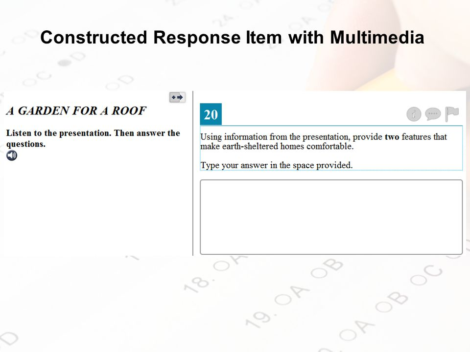 Constructed Response Item with Multimedia
